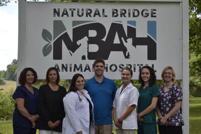 Natural Bridge Animal Hospital